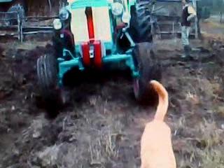 Трактор мтз 80 с большой кабиной на кмв б у